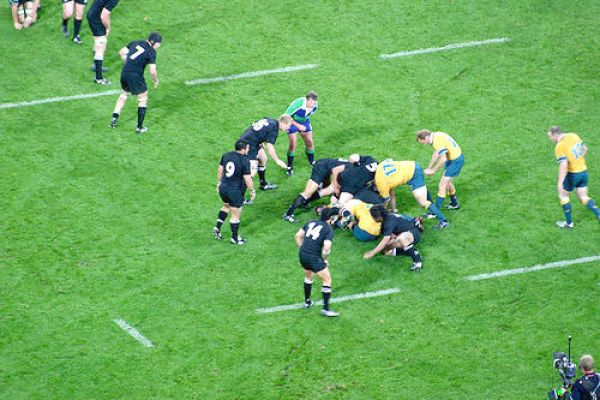 All_Blacks_Wallabies